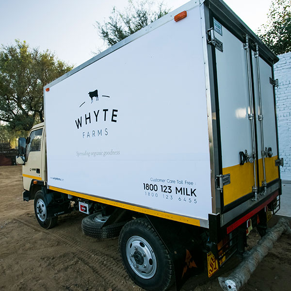 cow milk home delivery